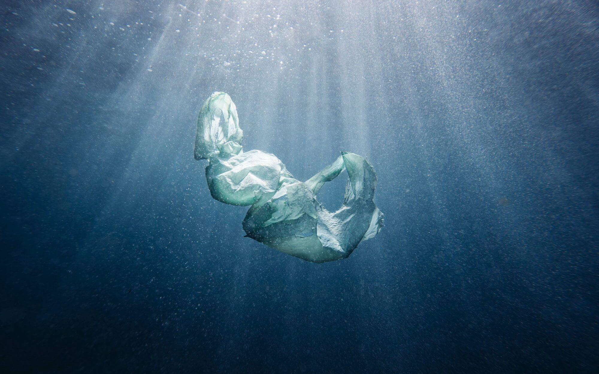 Scientists Find Ways to Get rid of Bacterial Contamination Microplastics