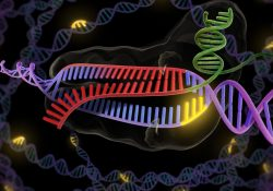 Harvard scientists have created a gene-editing tool comparable to CRISPR